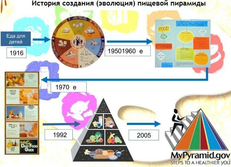 эволюция пищевой пирамиды