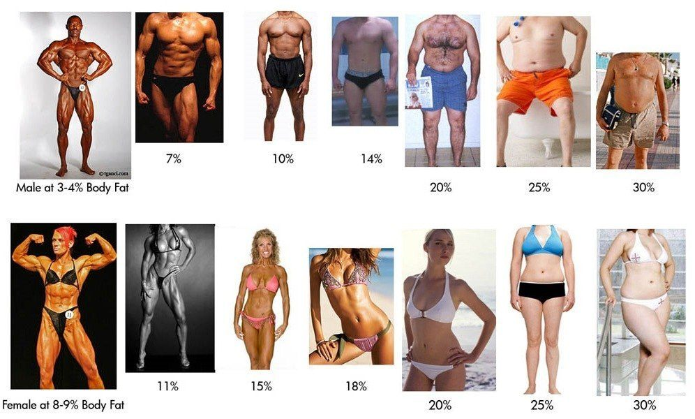 процент жира в организме человека
