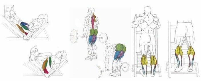 Примеры упражнений на ноги