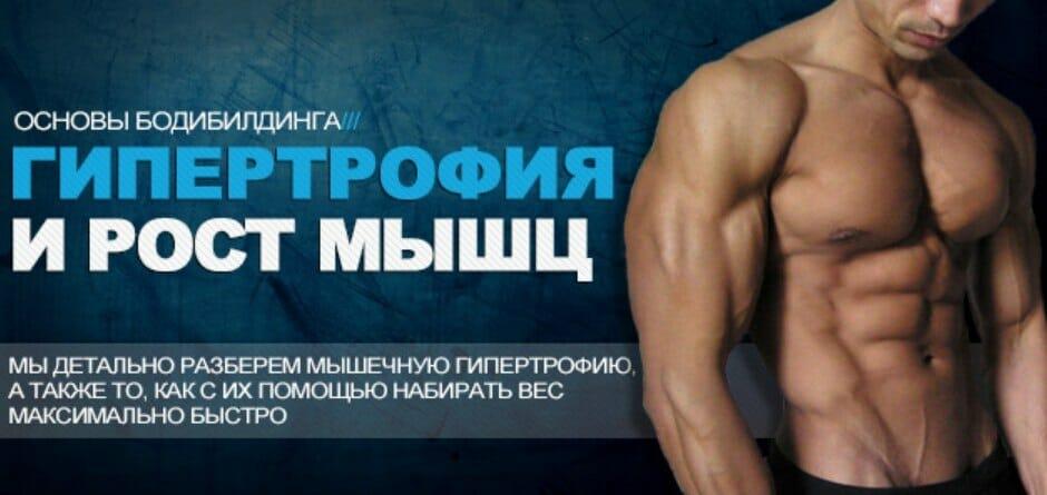 гипертрофия мышц, основа