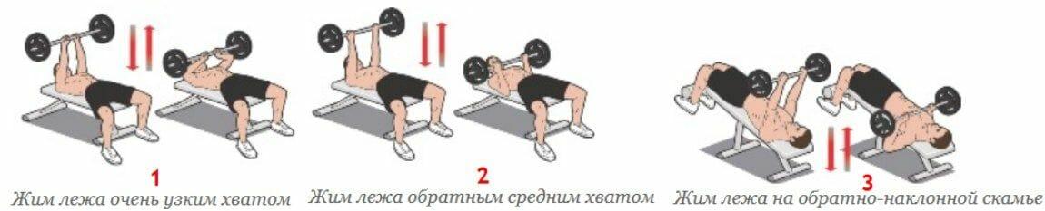 вариации упражнения жим лежа
