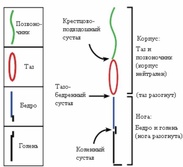 условные обозначения движений в коссфите