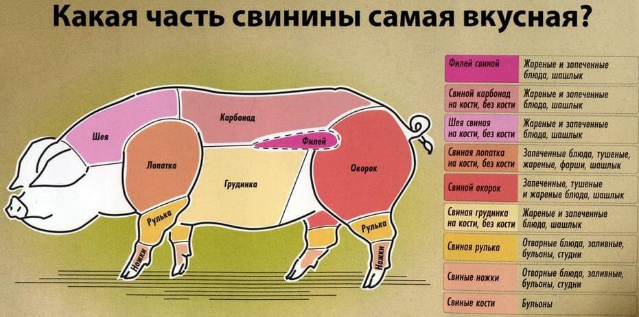 свинина, части мяса