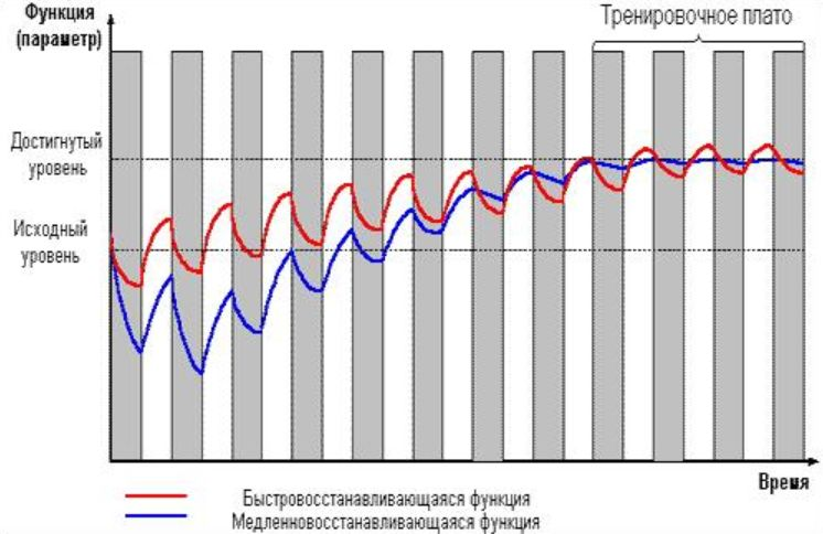 тренировочное плато, график