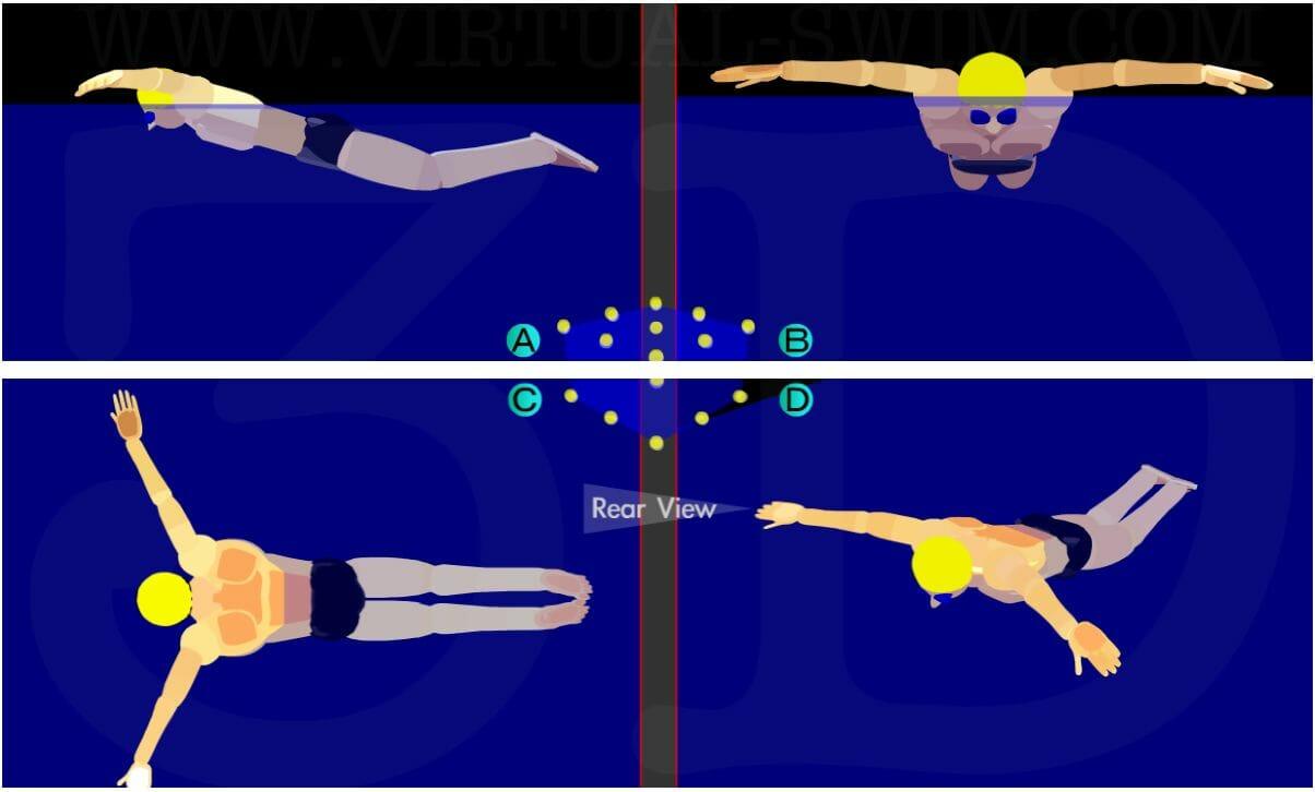 техника плавания баттерфляем