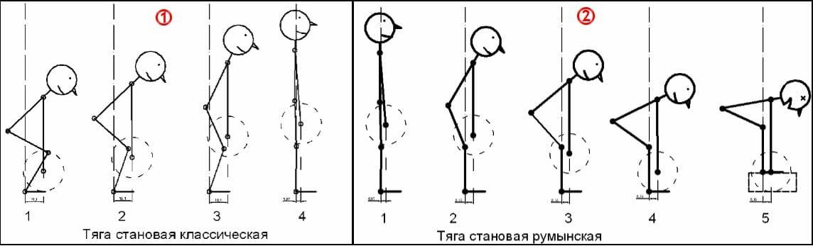 классическая и румынская становая тяги, отличия