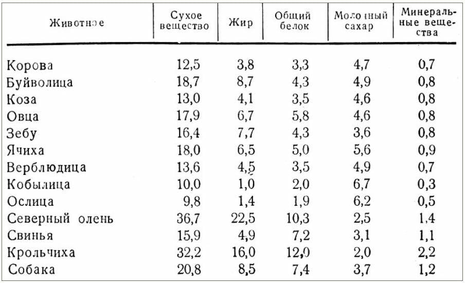 химический состав молока разных животных