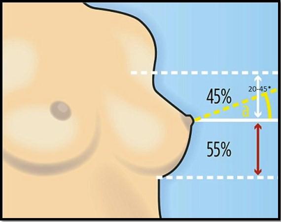 Небольшие стоячие груди, любительский анальный секс
