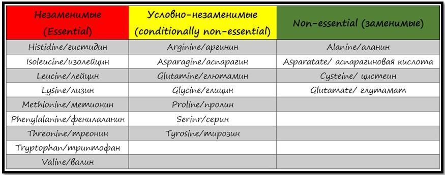 классификация аминокислот