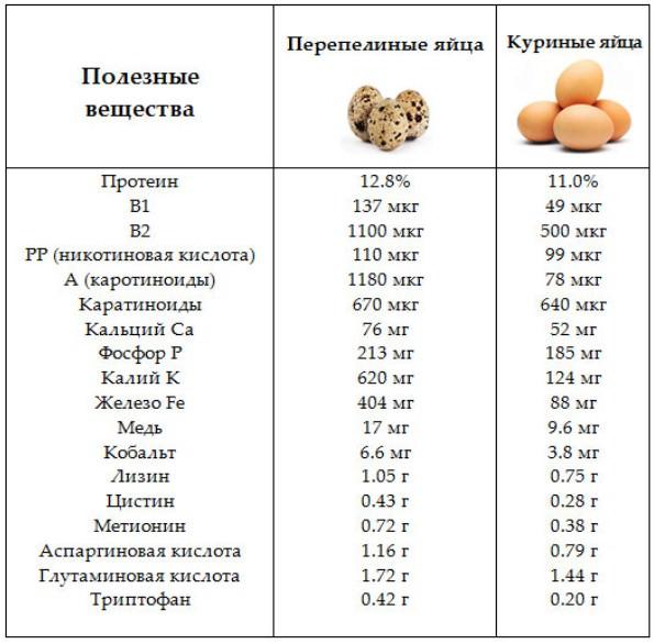 пищевая ценность куриных и перепелиных яиц