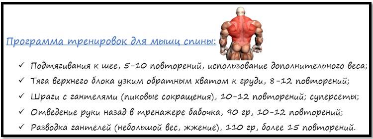 Программа тренировок для мышц спины