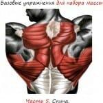 про базовые упражнения для набора массы. .  По прочтении Вы узнаете какие телодвижения...