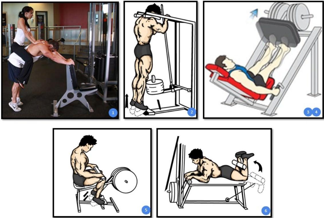 Лучшие упражнения для икроножных мышц.