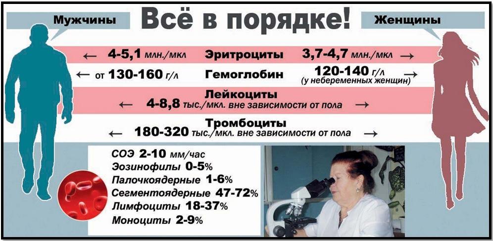 Интерпретация анализов крови, нормативные значения