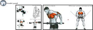 Альтернативы опасных упражнений на плечевой сустав