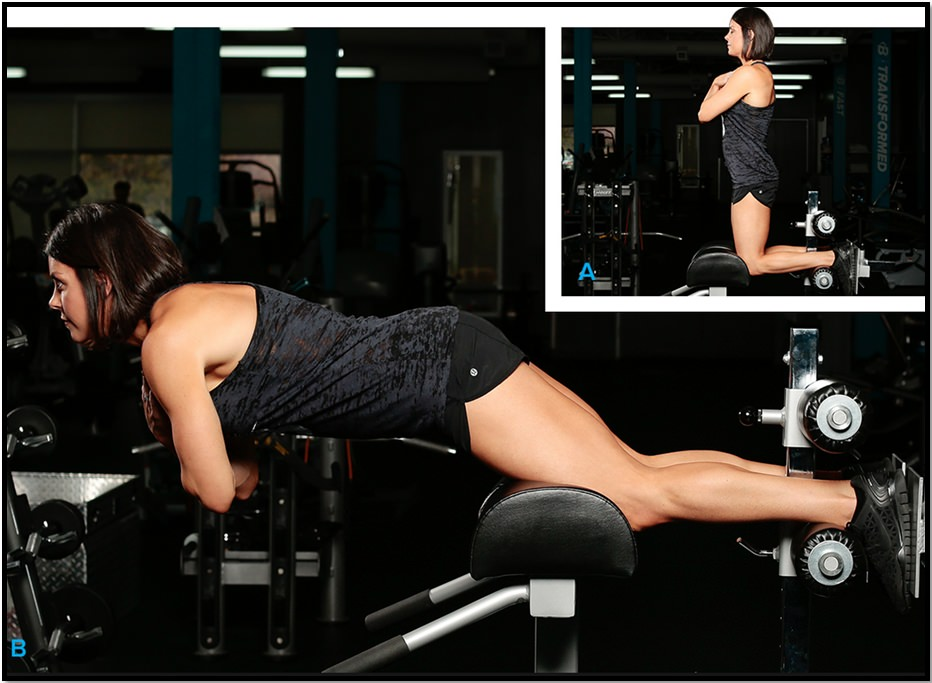 Техника выполнения упражнения подъем корпуса стоя на коленях в упоре