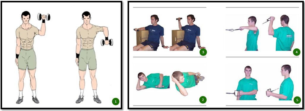 Упражнения на укрепление ротаторной манжеты