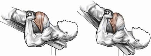 Разведение гантелей лежа на скамье под углом вниз разные углы
