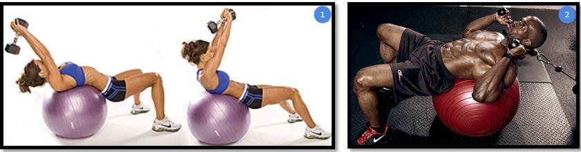 Варианты упражнения скручивание на фитболе