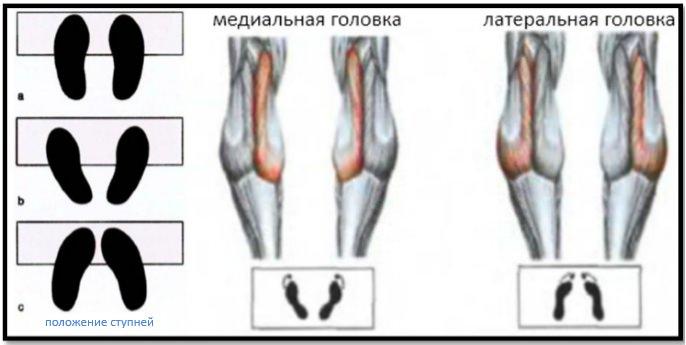 Подъемы на носки стоя постановка ступней