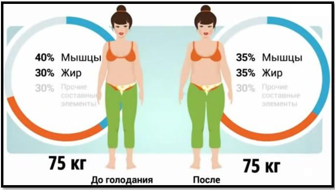 Упражнения для похудения. Соотношение мышц и жира до и после диеты.