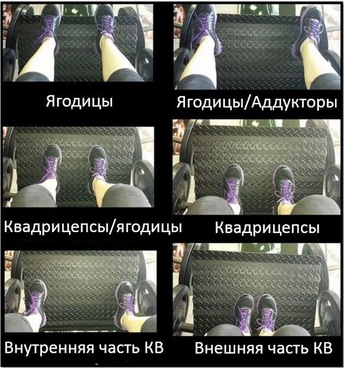 Жим ногами сидя. Различное положение ступней.