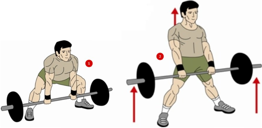 техника выполнения становой тяги в стиле сумо