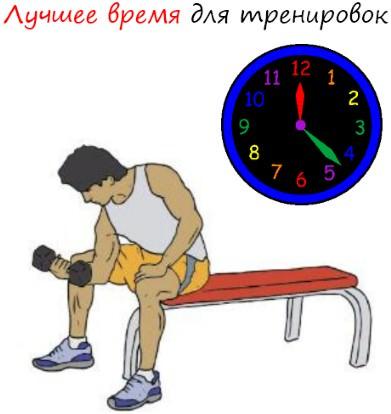Лучшее время для тренировок. Когда ходить в тренажерный зал?