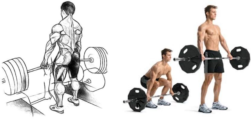 Упражнения для набора веса