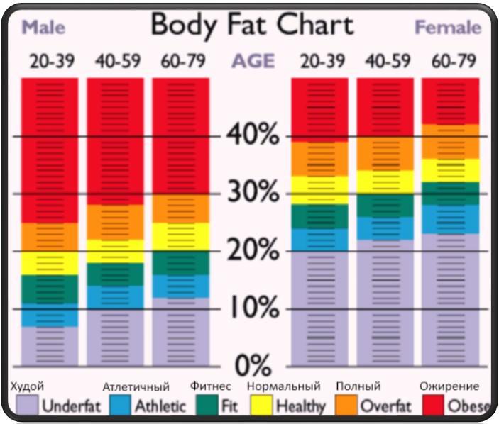 процент жира в организме с возрастом