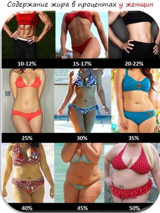 процент жира в женском организме