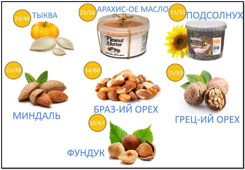 орехи и семена, богатые белком