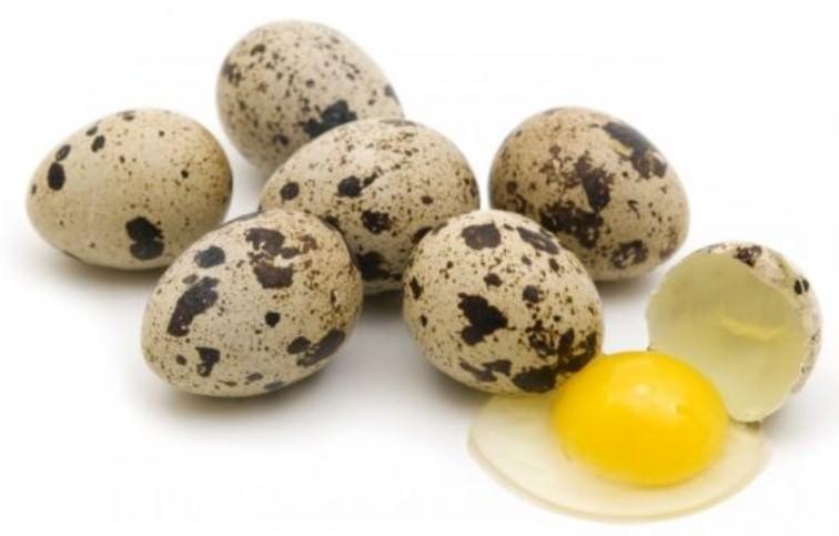 перепелиные яйца в бодибилдинге