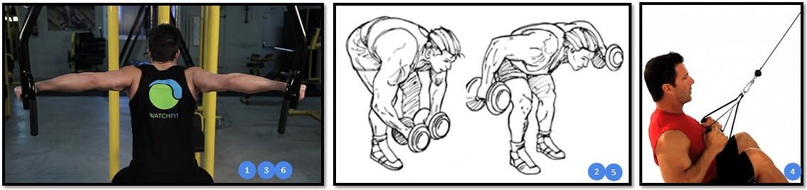 упражнения для трапеций, низ