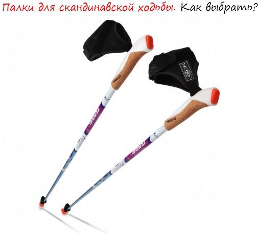Палки для скандинавской ходьбы лого
