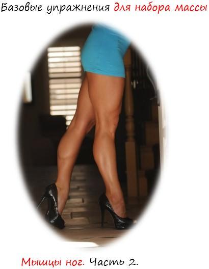 базовые упражнения для набора массы: ноги