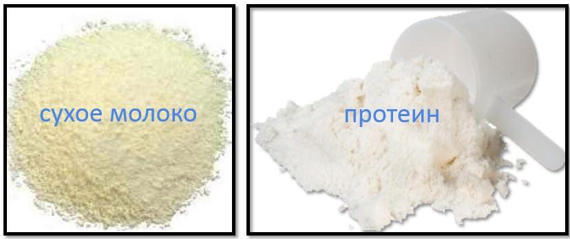 разница между сухим молоком и протеином