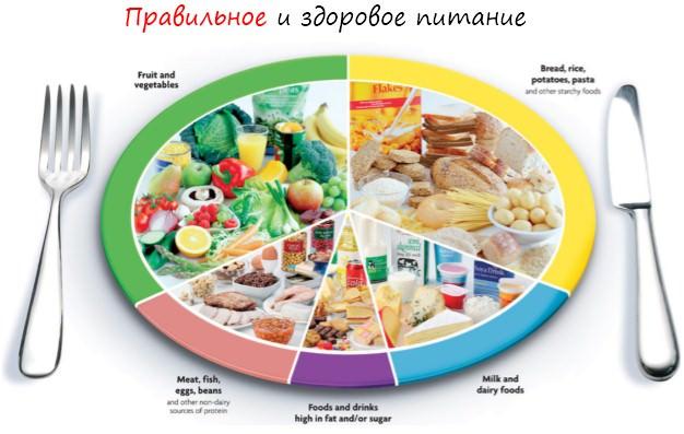 Как необходимо питаться и сколько потреблять еды