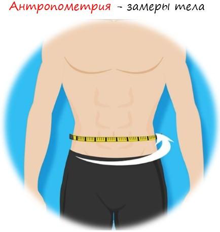 антропометрия и замеры тела