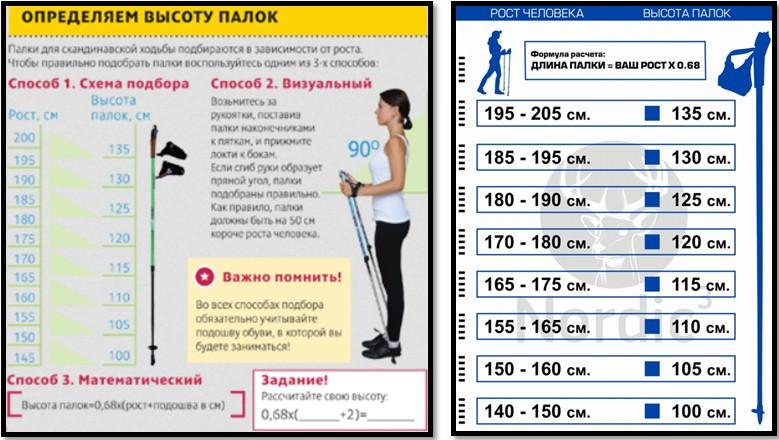 палки для скандинавской ходьбы как определить высоту