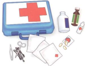 profilaktika-i-lechenie-300x232 profilaktika-i-lechenie