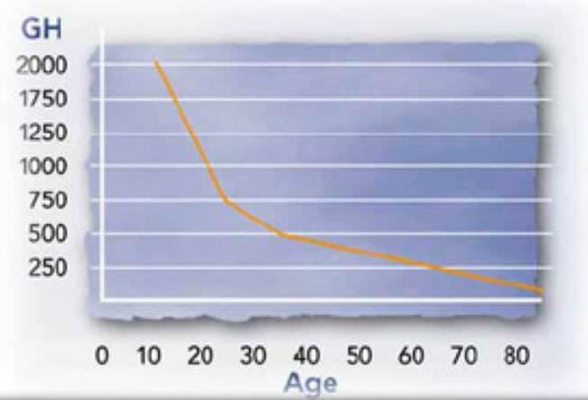 секреция гормона роста с возрастом