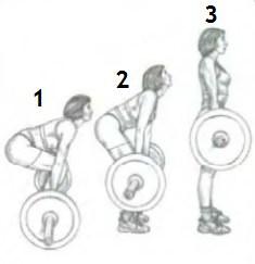 становая тяга, этапы движения