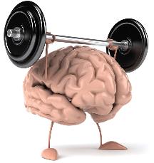 svyaz-mozga-i-myishts Как растут мышцы? Самое полное руководство.
