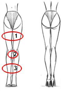 женские ноги, три просвета