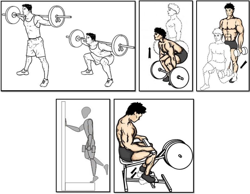 Программа тренировок для эктоморфа, упражнения ноги