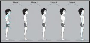 трансформация эктоморфа
