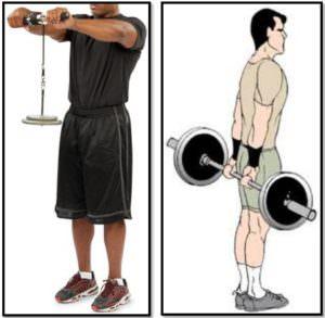 Программа тренировок для эктоморфа, упражнения запястья
