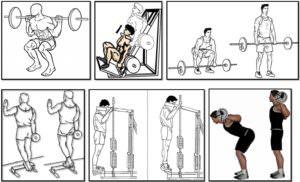 Программа тренировок для эктоморфа, ноги спина