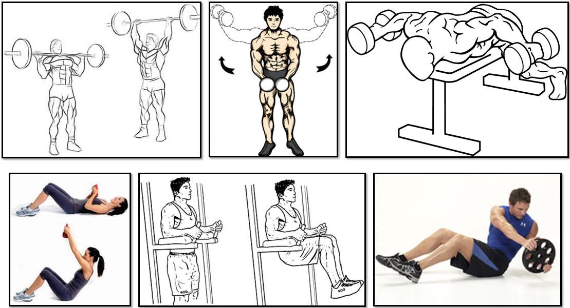 Программа тренировок для эктоморфа, упражнения плечи пресс